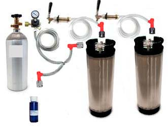 2 Keg Refrigerator Homebrew CO2 System (Pin Lock)